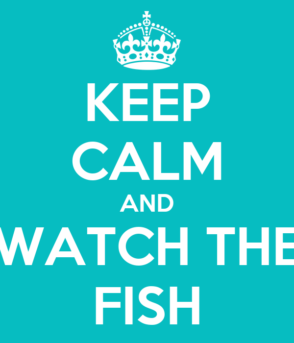 KEEP CALM AND WATCH THE FISH