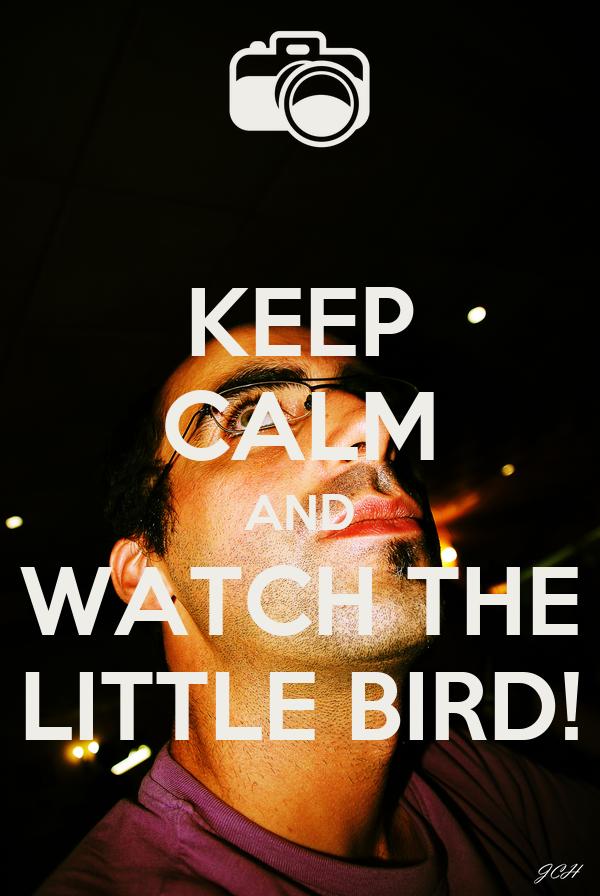 KEEP CALM AND WATCH THE LITTLE BIRD!