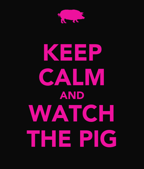 KEEP CALM AND WATCH THE PIG