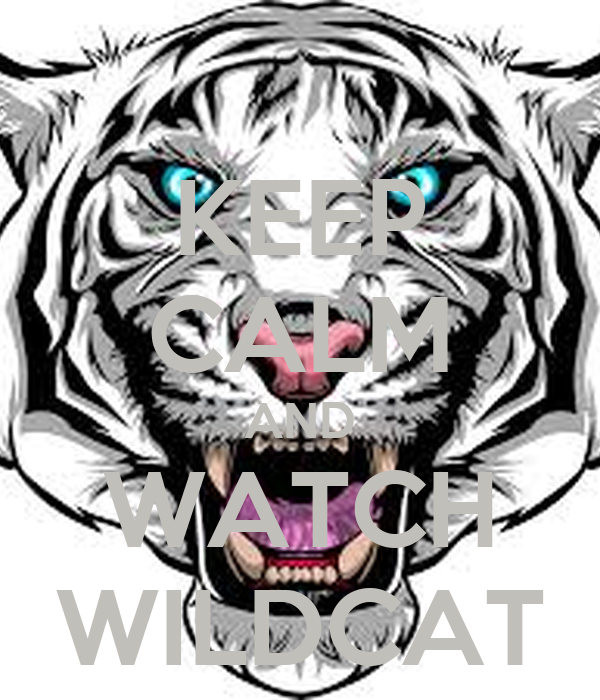 KEEP CALM AND WATCH WILDCAT