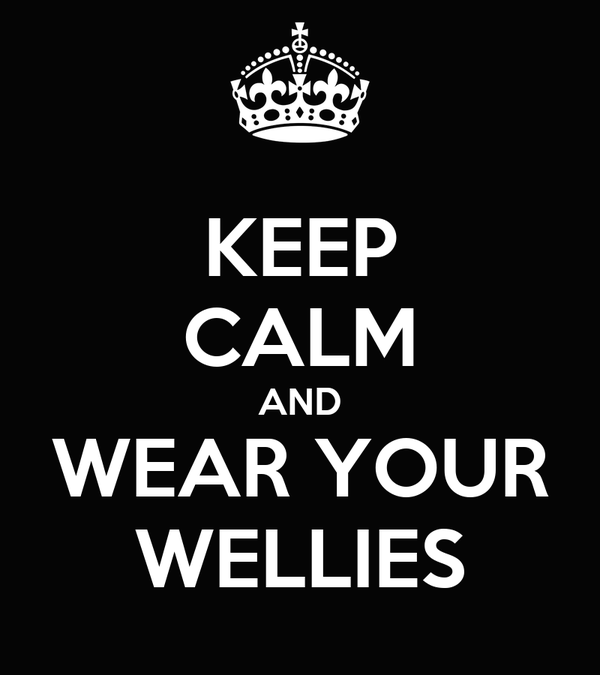 KEEP CALM AND WEAR YOUR WELLIES