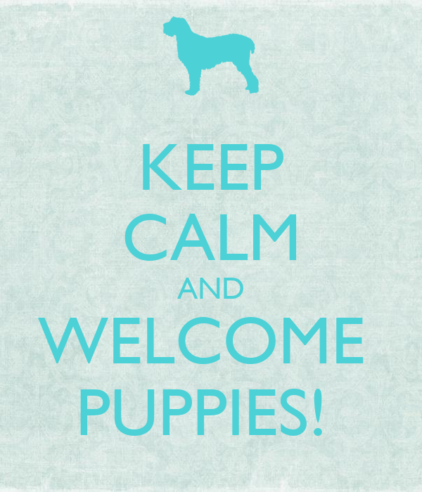 KEEP CALM AND WELCOME  PUPPIES!