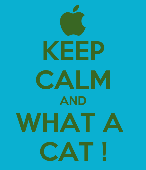 KEEP CALM AND WHAT A  CAT !