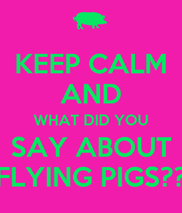KEEP CALM AND WHAT DID YOU SAY ABOUT FLYING PIGS??