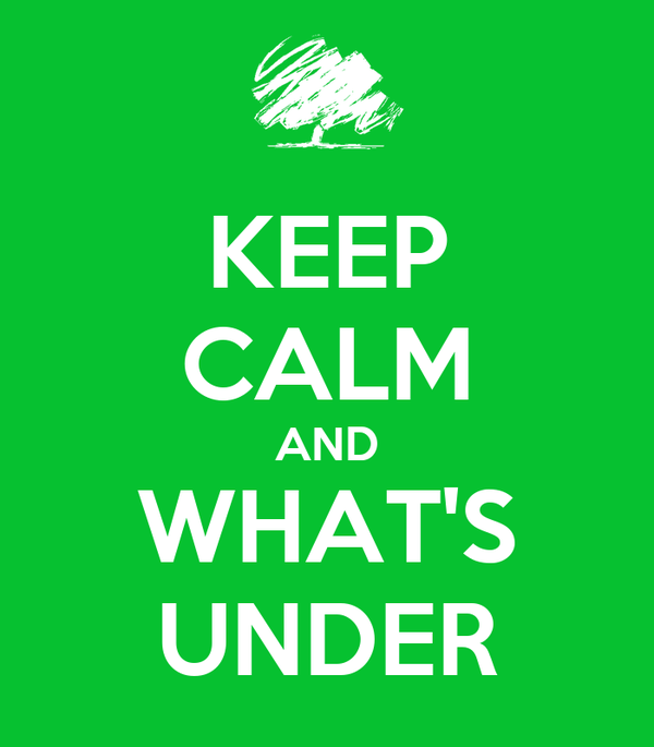 KEEP CALM AND WHAT'S UNDER