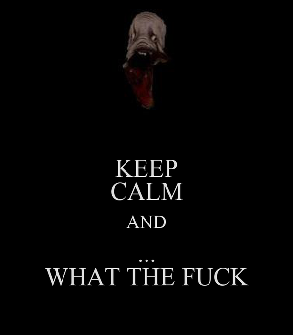 KEEP CALM AND ... WHAT THE FUCK