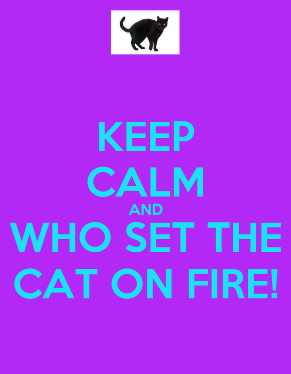 KEEP CALM AND WHO SET THE CAT ON FIRE!
