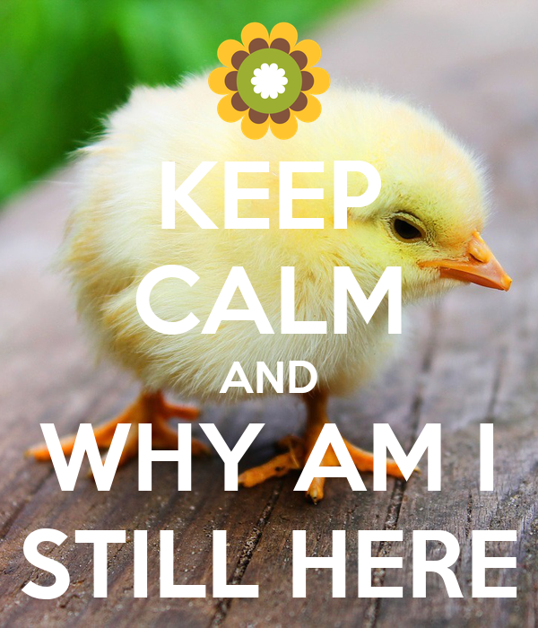 KEEP CALM AND WHY AM I STILL HERE