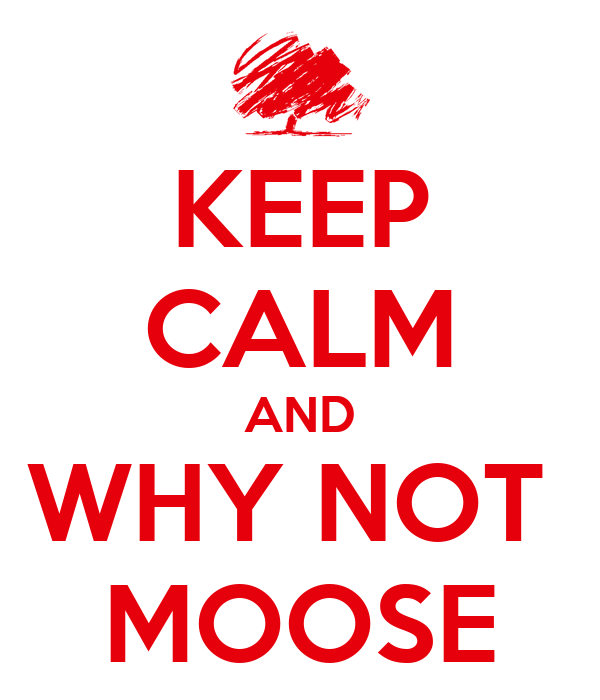 KEEP CALM AND WHY NOT  MOOSE
