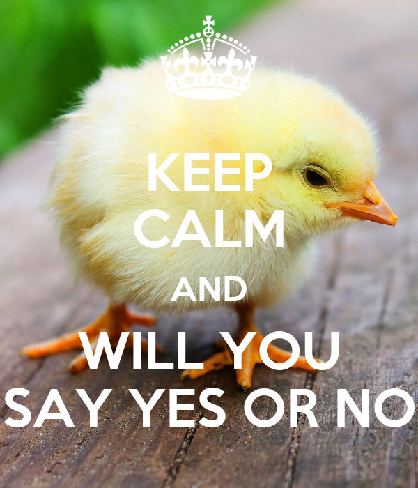 KEEP CALM AND WILL YOU SAY YES OR NO