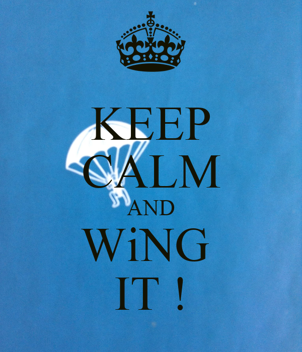 KEEP CALM AND WiNG  IT !