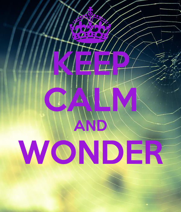 KEEP CALM AND WONDER