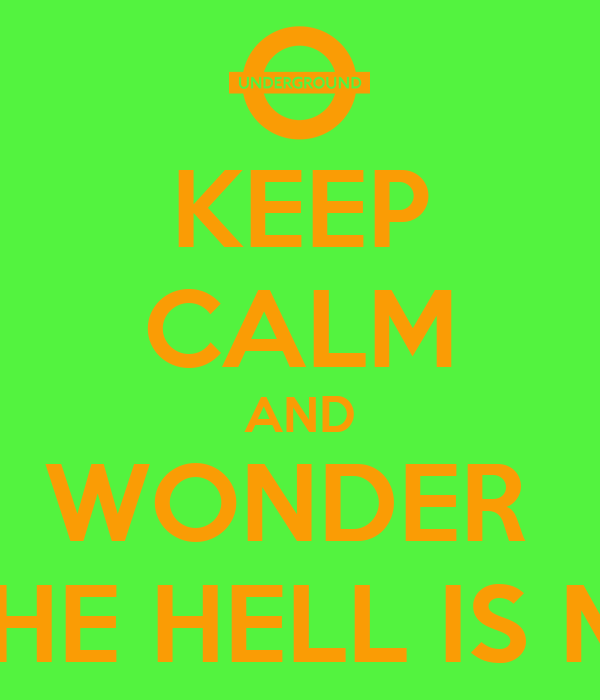KEEP CALM AND WONDER  WHERE THE HELL IS MY TRAIN