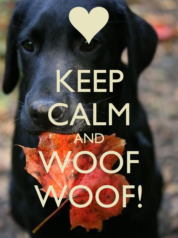 KEEP CALM AND WOOF WOOF!