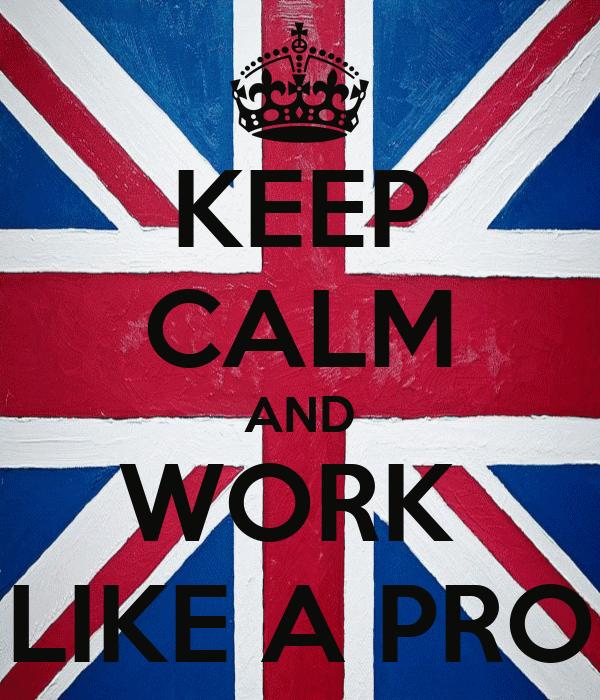 KEEP CALM AND WORK  LIKE A PRO