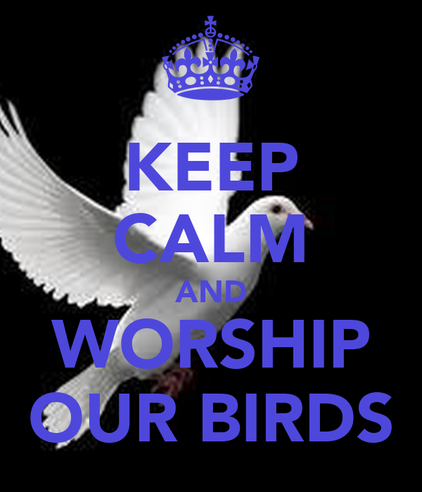 KEEP CALM AND WORSHIP OUR BIRDS