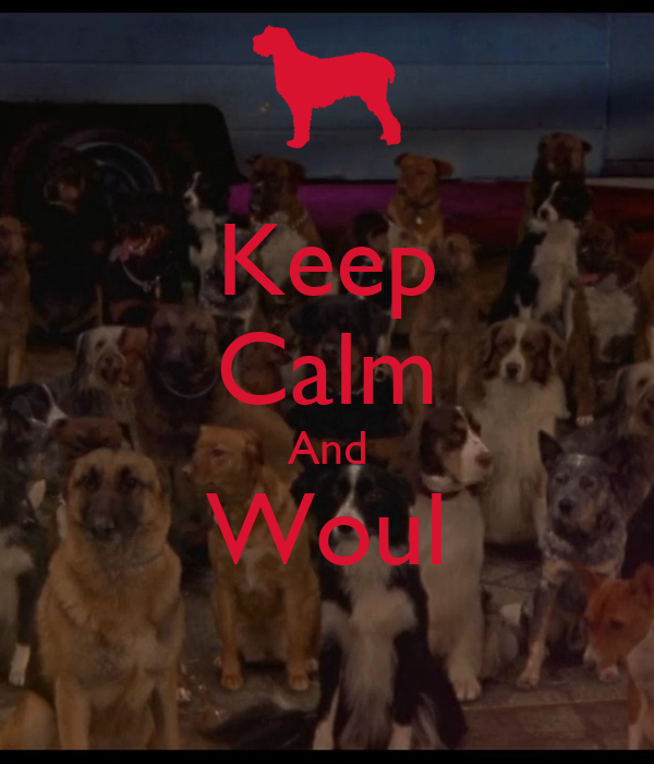 Keep Calm And Woul