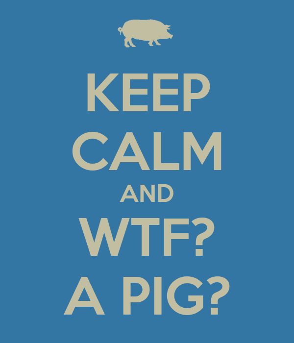 KEEP CALM AND WTF? A PIG?