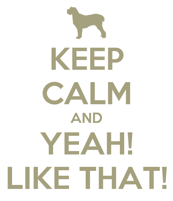 KEEP CALM AND YEAH! LIKE THAT!