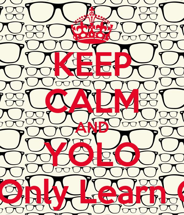 KEEP CALM AND YOLO You Only Learn Once