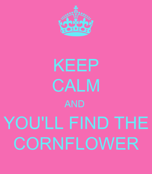 KEEP CALM AND  YOU'LL FIND THE CORNFLOWER