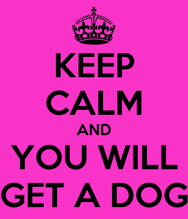 KEEP CALM AND YOU WILL GET A DOG