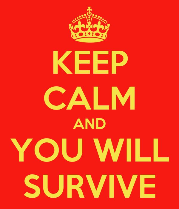 KEEP CALM AND YOU WILL SURVIVE