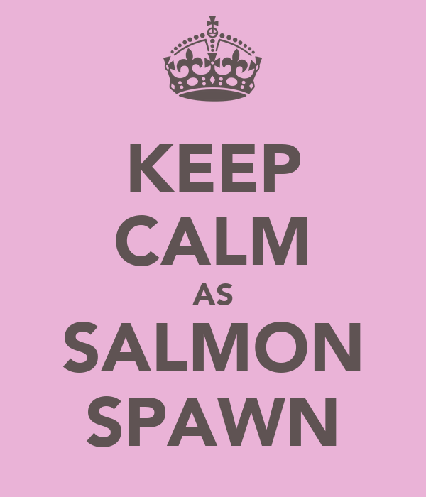KEEP CALM AS SALMON SPAWN