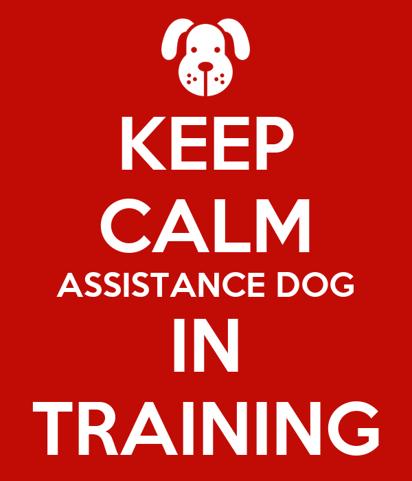 KEEP CALM ASSISTANCE DOG IN TRAINING