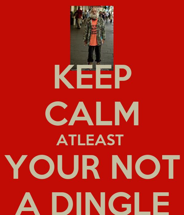 KEEP CALM ATLEAST  YOUR NOT A DINGLE