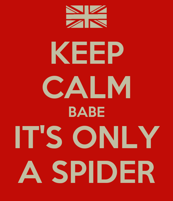 KEEP CALM BABE IT'S ONLY A SPIDER