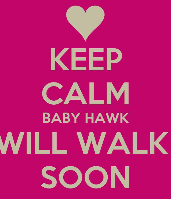 KEEP CALM BABY HAWK WILL WALK  SOON