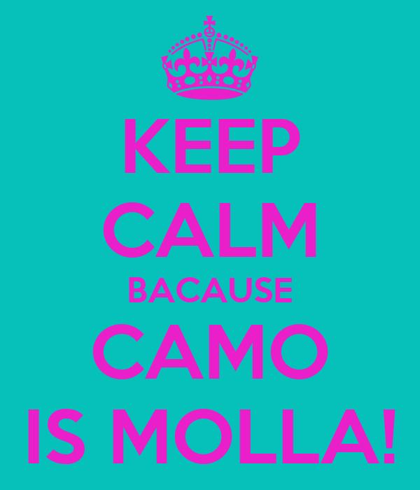 KEEP CALM BACAUSE CAMO IS MOLLA!