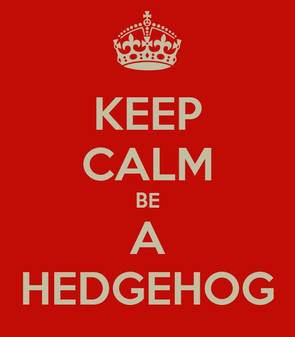 KEEP CALM BE A HEDGEHOG