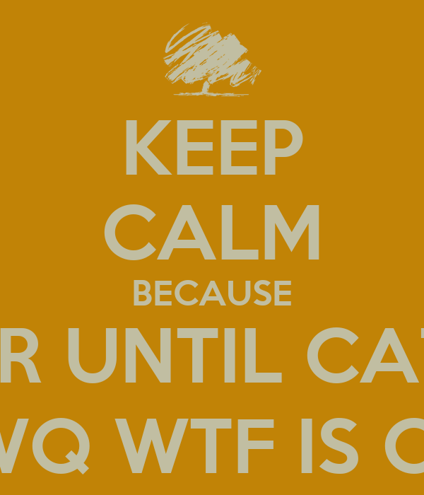 KEEP CALM BECAUSE 1 MORE YEAR UNTIL CATCHING FIRE AFDWJKAF;BQJE;BGFJWQ WTF IS CALM1!?!?!?!?!?!?!!!!?!?!?!??!