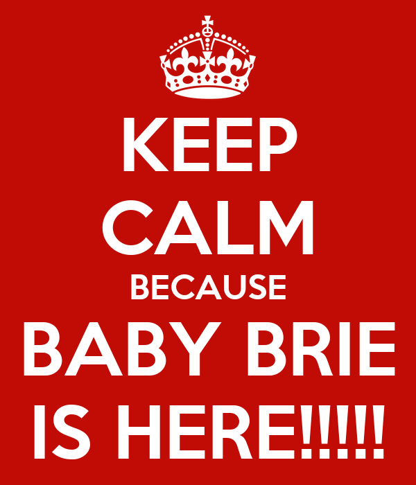 KEEP CALM BECAUSE BABY BRIE IS HERE!!!!!