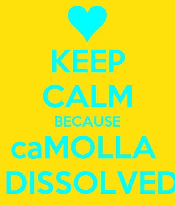 KEEP CALM BECAUSE caMOLLA   DISSOLVED