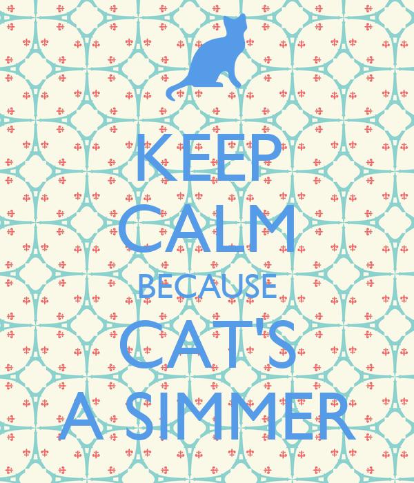 KEEP CALM BECAUSE CAT'S A SIMMER