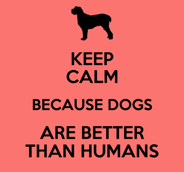KEEP CALM BECAUSE DOGS ARE BETTER THAN HUMANS