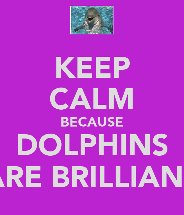 KEEP CALM BECAUSE DOLPHINS ARE BRILLIANT