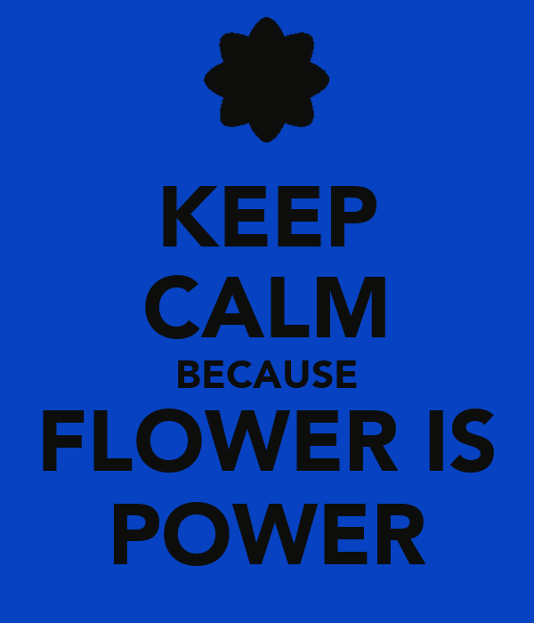 KEEP CALM BECAUSE FLOWER IS POWER