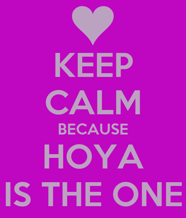 KEEP CALM BECAUSE HOYA IS THE ONE