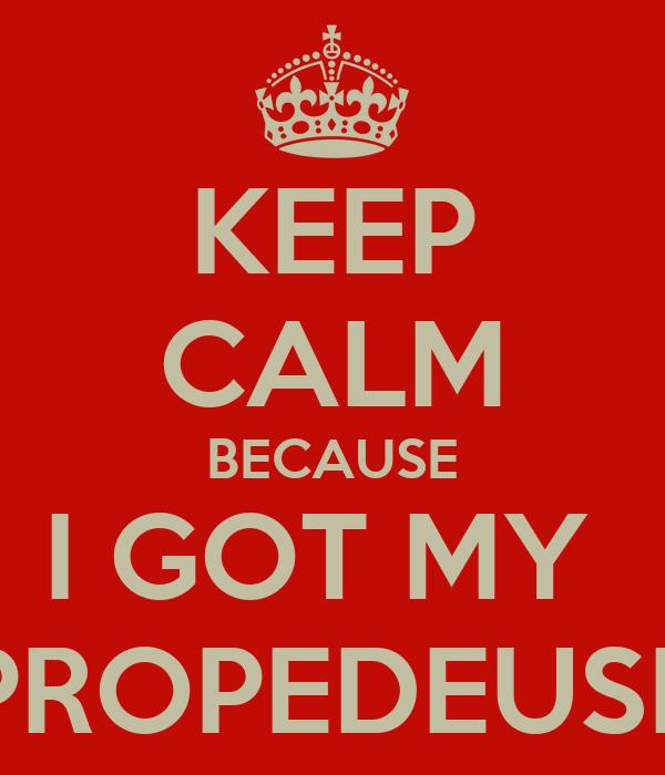 KEEP CALM BECAUSE I GOT MY  PROPEDEUSE