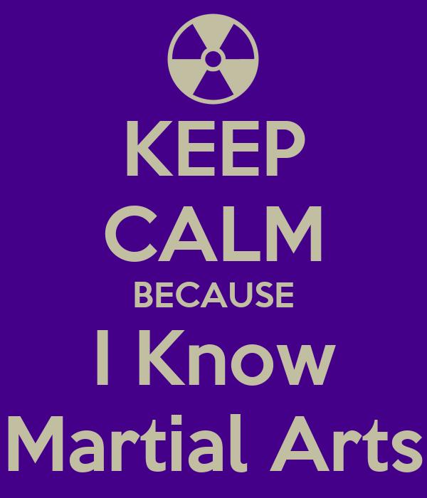 KEEP CALM BECAUSE I Know Martial Arts