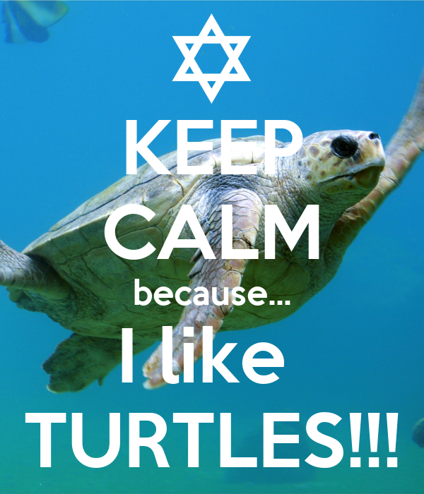 KEEP CALM because... I like  TURTLES!!!