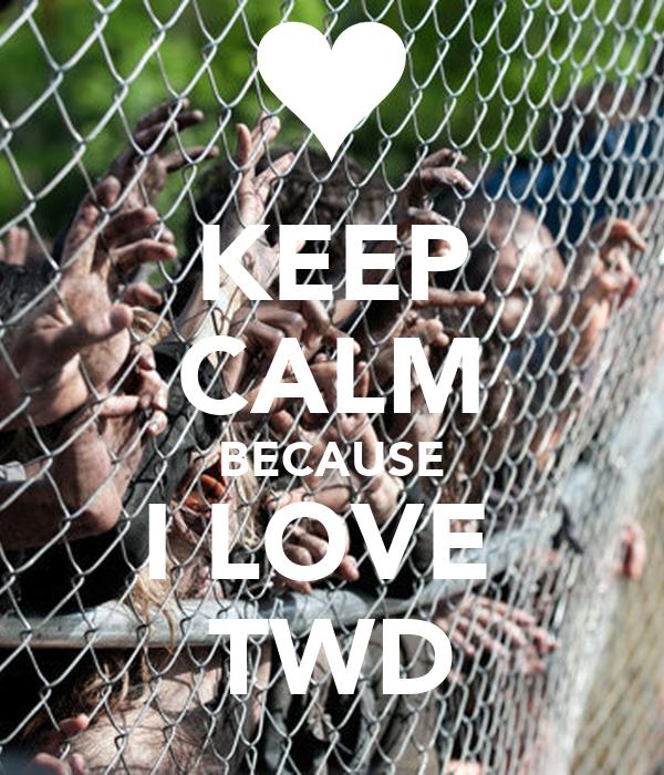 KEEP CALM BECAUSE I LOVE  TWD