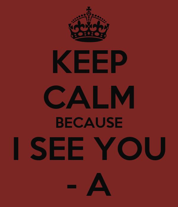 KEEP CALM BECAUSE I SEE YOU - A