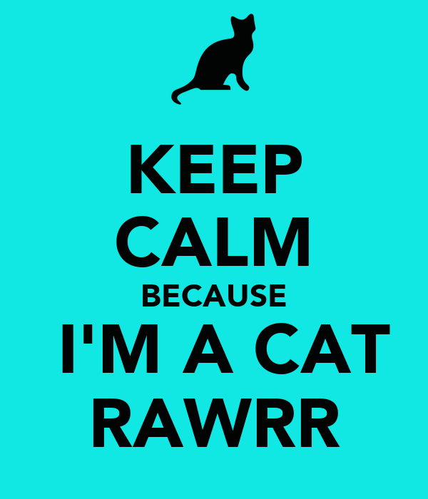 KEEP CALM BECAUSE  I'M A CAT RAWRR
