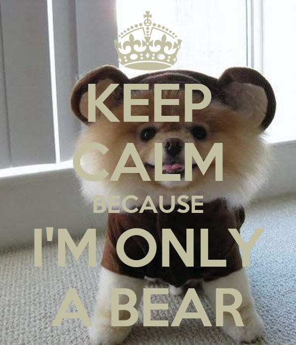 KEEP CALM BECAUSE I'M ONLY A BEAR