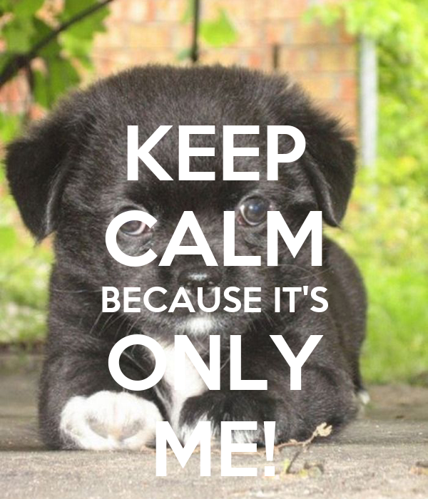 KEEP CALM BECAUSE IT'S ONLY ME!